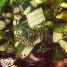 Finished jars ready for the fridge